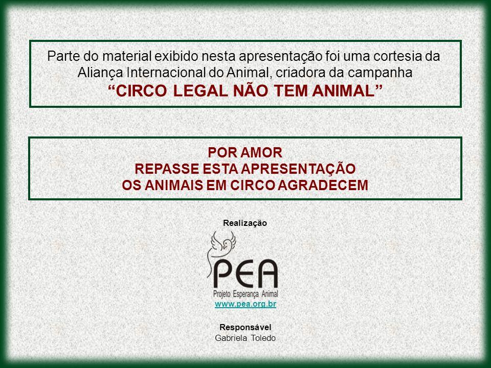 Parte do material exibido nesta apresentação foi uma cortesia da Aliança Internacional do Animal, criadora da campanha CIRCO LEGAL NÃO TEM ANIMAL POR