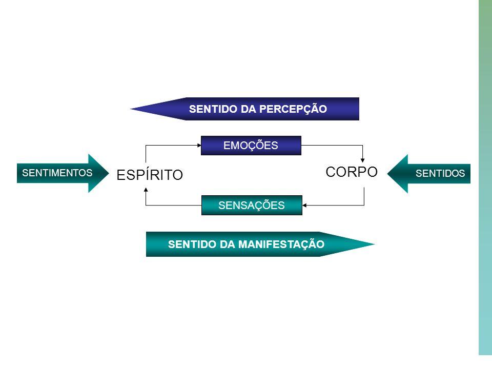 48 SENTIDO DA MANIFESTAÇÃO ESPÍRITO CORPO EMOÇÕES SENSAÇÕES SENTIDOSSENTIMENTOS SENTIDO DA PERCEPÇÃO