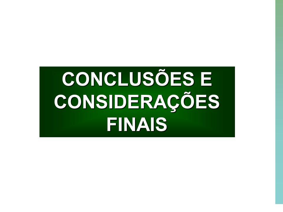 53 CONCLUSÕES E CONSIDERAÇÕES FINAIS