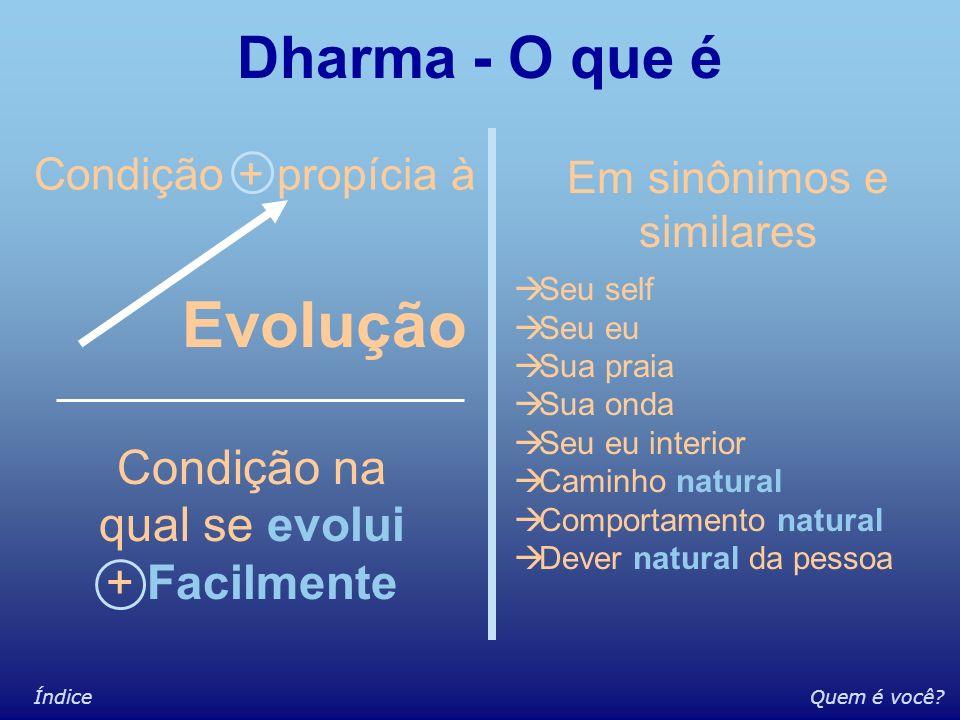 Quem é você?Índice Quem é Você? Histórico Comportamental / Sentimental Conceitual O Dharma está intimamente ligado a este aspecto Uma inferência nesta