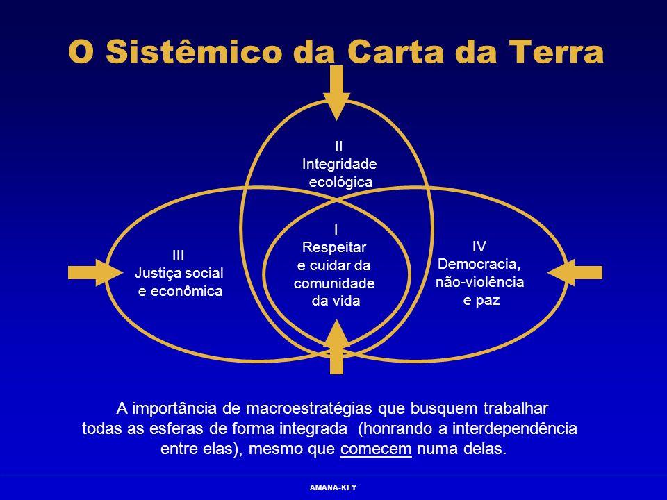 AMANA-KEY O Sistêmico da Carta da Terra A importância de macroestratégias que busquem trabalhar todas as esferas de forma integrada (honrando a interd