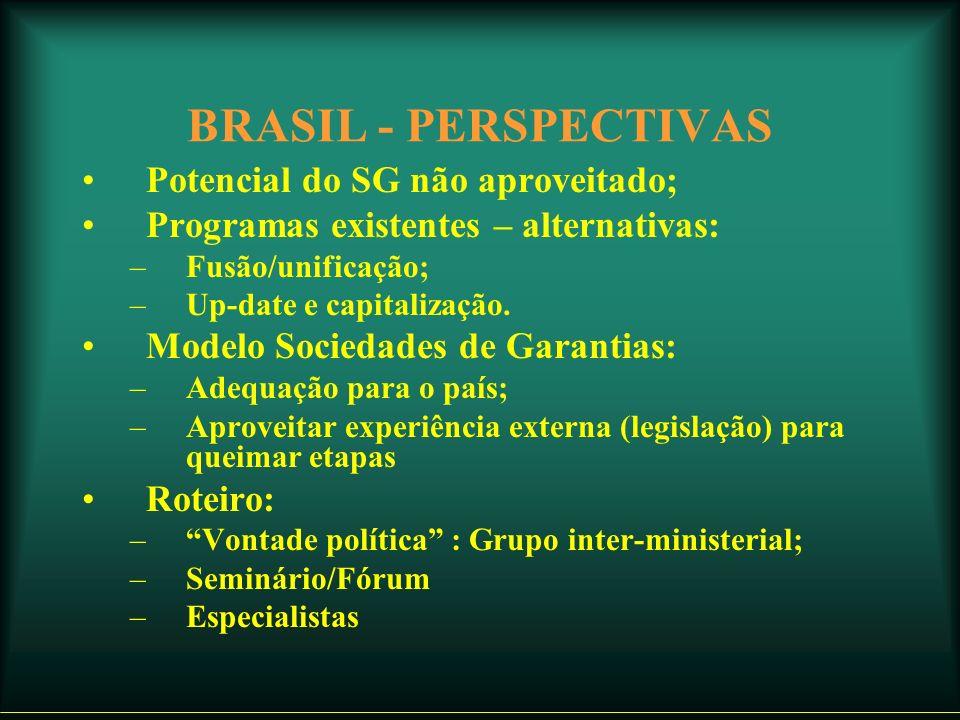BRASIL - PERSPECTIVAS Potencial do SG não aproveitado; Programas existentes – alternativas: –Fusão/unificação; –Up-date e capitalização.
