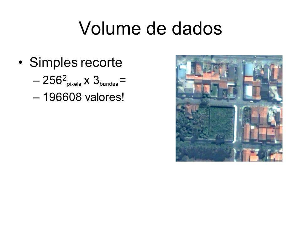 GeoDMA na TerraLib Uso de funções de Processamento de Imagens –Segmentação Region Growing –Extração de Atributos Algoritmos de Data Mining –C4.5 – Árvores de Decisão –Mapas Auto-Organizáveis –...