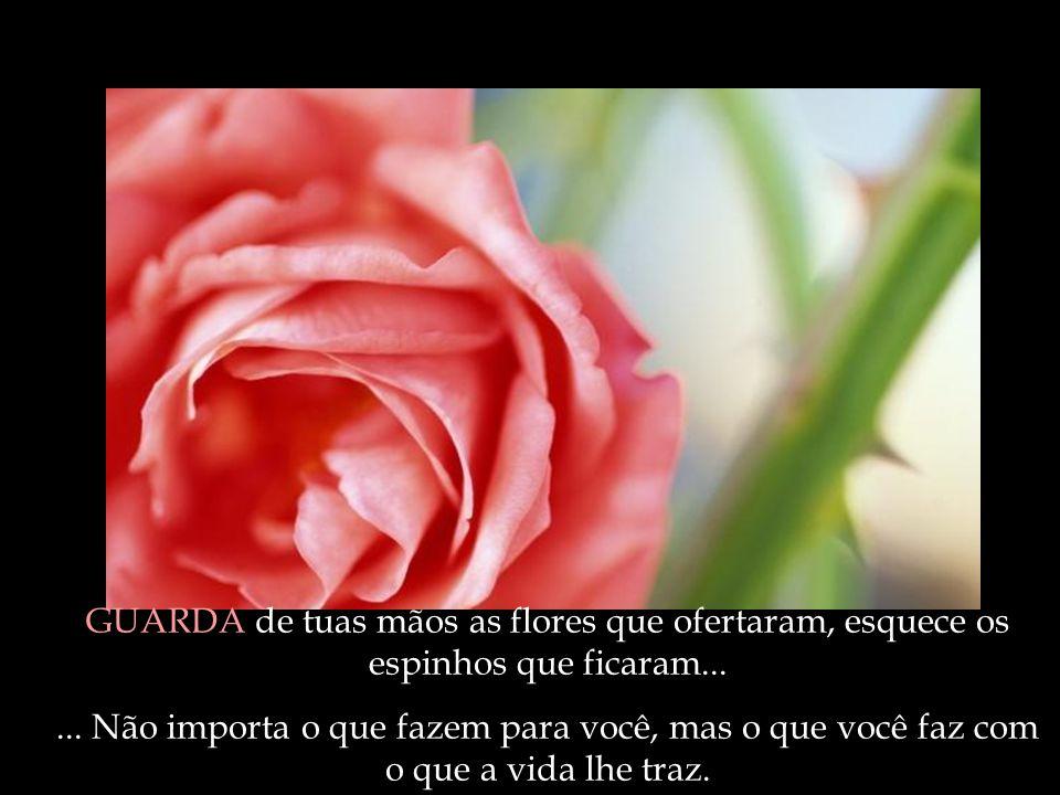 GUARDA de tuas mãos as flores que ofertaram, esquece os espinhos que ficaram...... Não importa o que fazem para você, mas o que você faz com o que a v