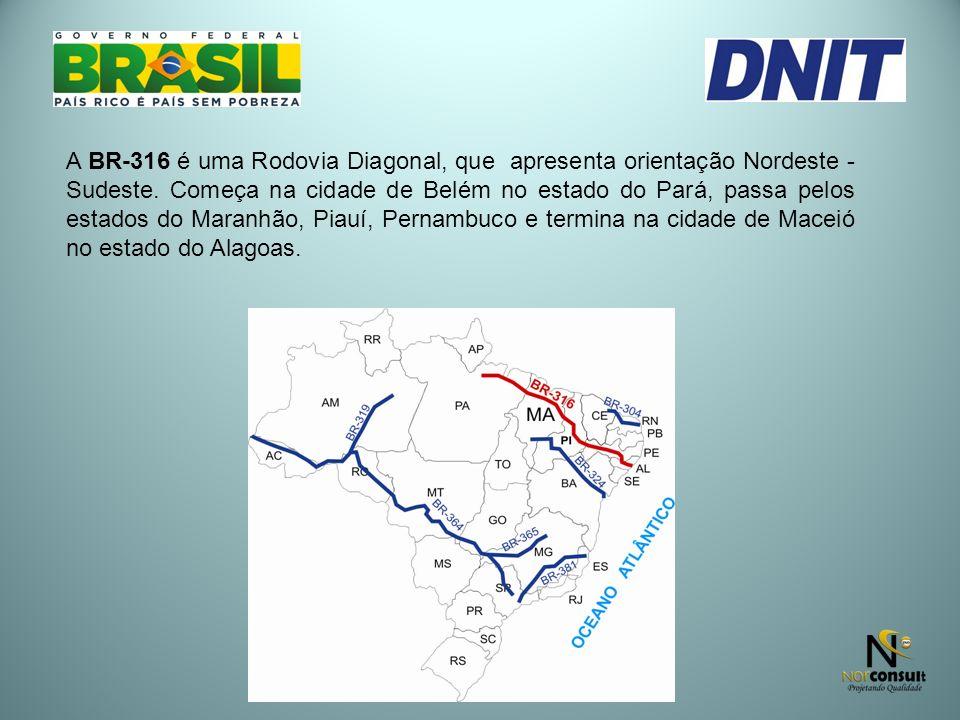A BR-316 é uma Rodovia Diagonal, que apresenta orientação Nordeste - Sudeste. Começa na cidade de Belém no estado do Pará, passa pelos estados do Mara