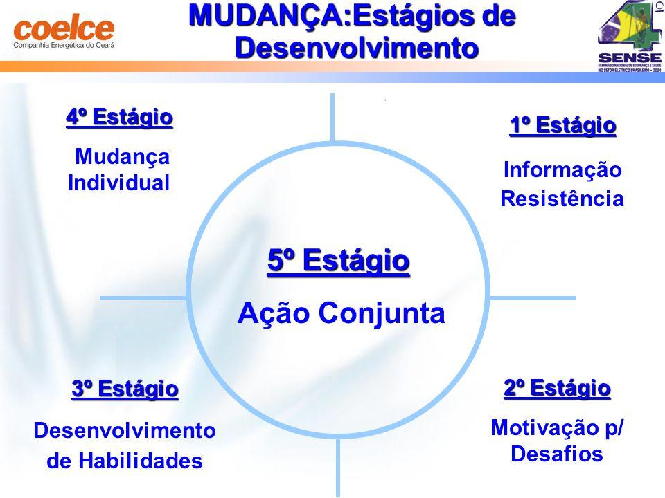 1º Estágio Informação Resistência 2º Estágio Motivação p/ Desafios 3º Estágio Desenvolvimento de Habilidades 4º Estágio Mudança Individual 5º Estágio