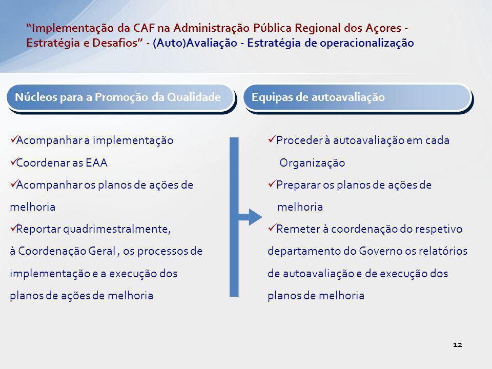 Núcleos para a Promoção da Qualidade Acompanhar a implementação Coordenar as EAA Acompanhar os planos de ações de melhoria Reportar quadrimestralmente
