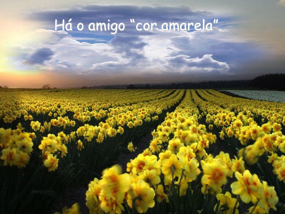 É aquele que em tudo ressalta a beleza da vida e põe esperança nela. Ele nos ergue...
