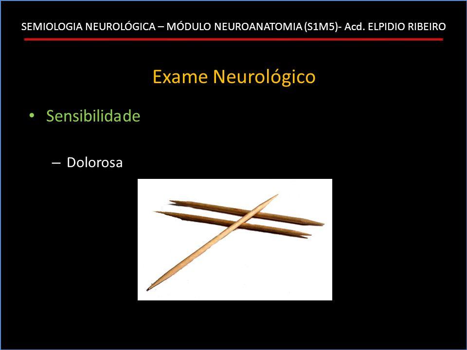 SEMIOLOGIA NEUROLÓGICA – MÓDULO NEUROANATOMIA (S1M5)- Acd. ELPIDIO RIBEIRO Exame Neurológico Sensibilidade – Dolorosa