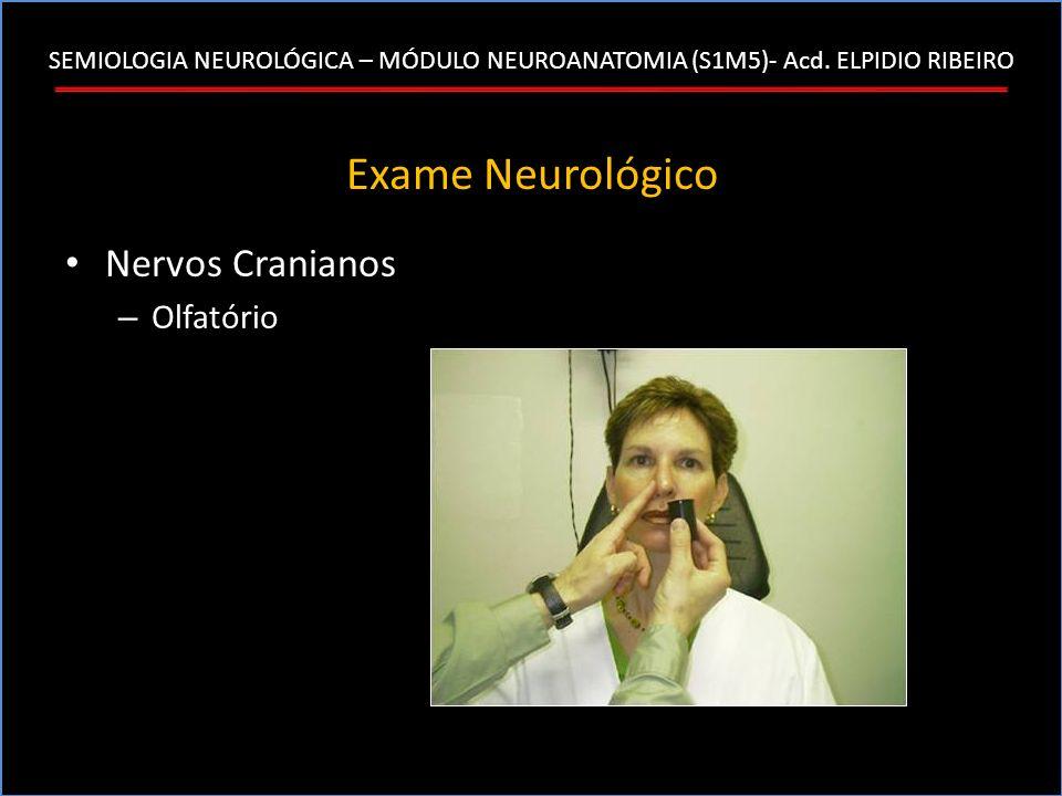 SEMIOLOGIA NEUROLÓGICA – MÓDULO NEUROANATOMIA (S1M5)- Acd. ELPIDIO RIBEIRO Exame Neurológico Nervos Cranianos – Olfatório