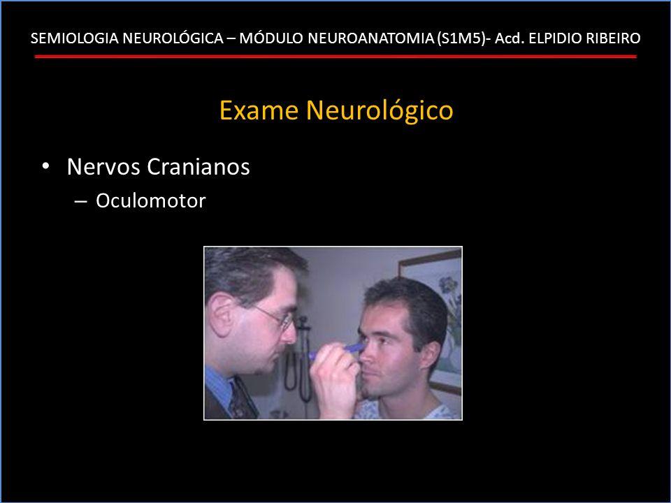 SEMIOLOGIA NEUROLÓGICA – MÓDULO NEUROANATOMIA (S1M5)- Acd. ELPIDIO RIBEIRO Exame Neurológico Nervos Cranianos – Oculomotor