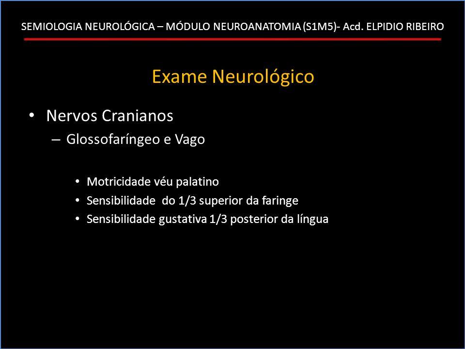 SEMIOLOGIA NEUROLÓGICA – MÓDULO NEUROANATOMIA (S1M5)- Acd. ELPIDIO RIBEIRO Exame Neurológico Nervos Cranianos – Glossofaríngeo e Vago Motricidade véu