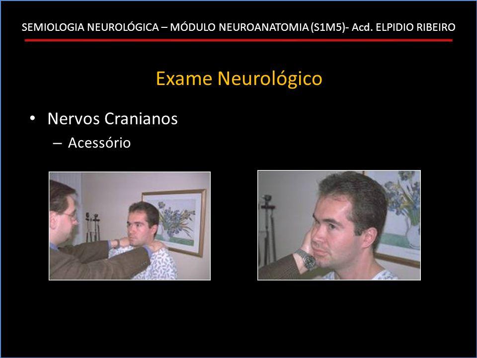 SEMIOLOGIA NEUROLÓGICA – MÓDULO NEUROANATOMIA (S1M5)- Acd. ELPIDIO RIBEIRO Exame Neurológico Nervos Cranianos – Acessório