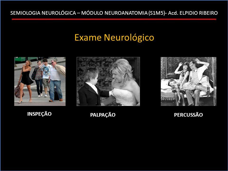 SEMIOLOGIA NEUROLÓGICA – MÓDULO NEUROANATOMIA (S1M5)- Acd. ELPIDIO RIBEIRO Exame Neurológico PERCUSSÃO INSPEÇÃO PALPAÇÃO