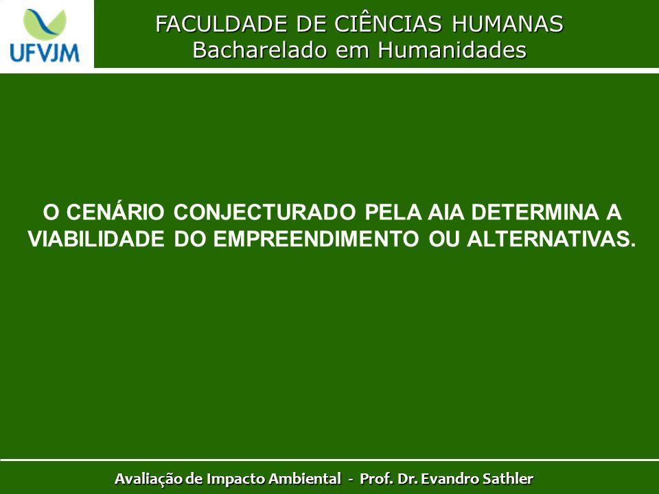 FACULDADE DE CIÊNCIAS HUMANAS Bacharelado em Humanidades Avaliação de Impacto Ambiental - Prof. Dr. Evandro Sathler O CENÁRIO CONJECTURADO PELA AIA DE