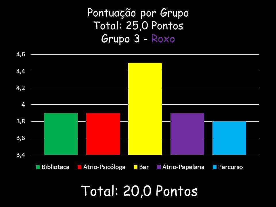 Pontuação por Grupo Total: 25,0 Pontos Grupo 3 - Roxo Total: 20,0 Pontos