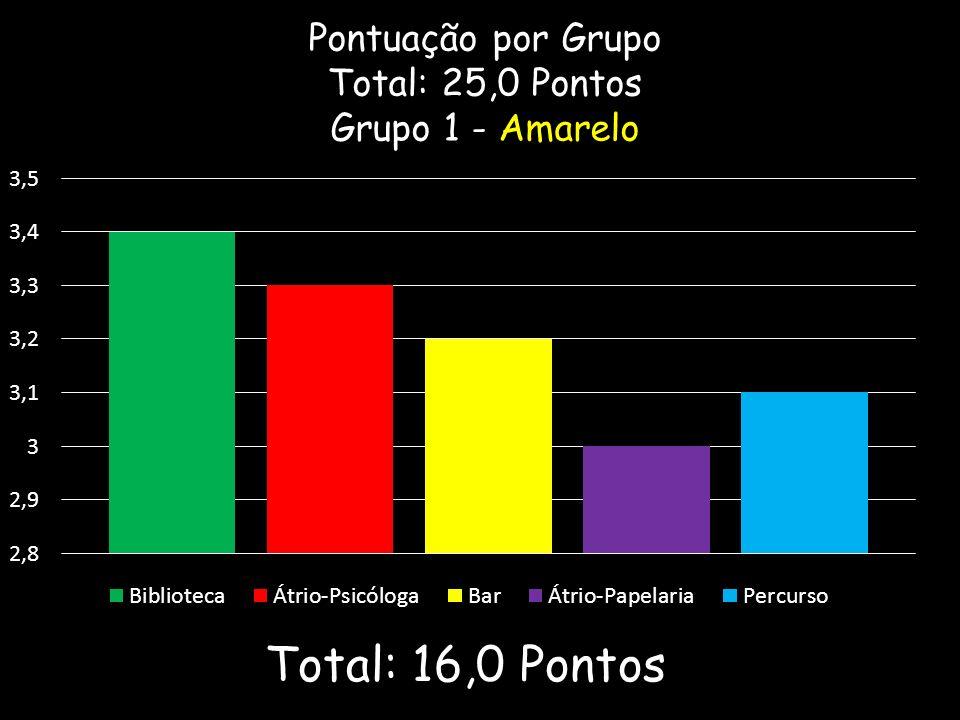 Pontuação por Grupo Total: 25,0 Pontos Grupo 1 - Amarelo Total: 16,0 Pontos
