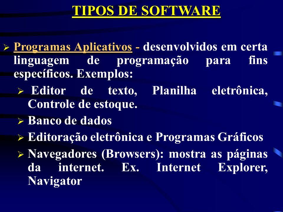 TIPOS DE SOFTWARE Programas Aplicativos - Programas Aplicativos - desenvolvidos em certa linguagem de programação para fins específicos.