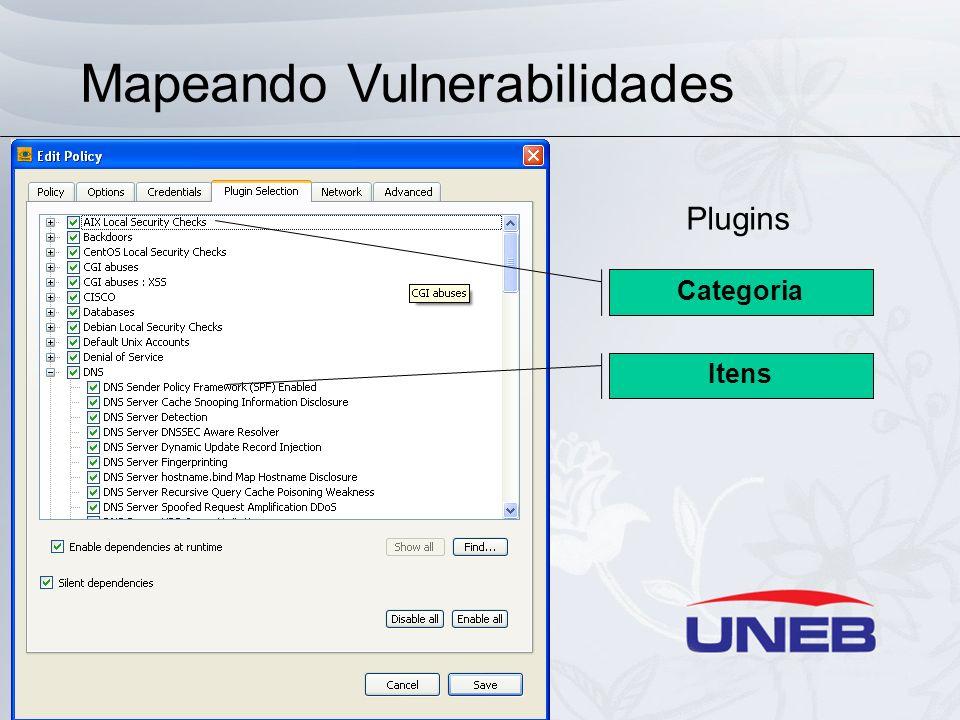 Mapeando Vulnerabilidades Plugins Categoria Itens