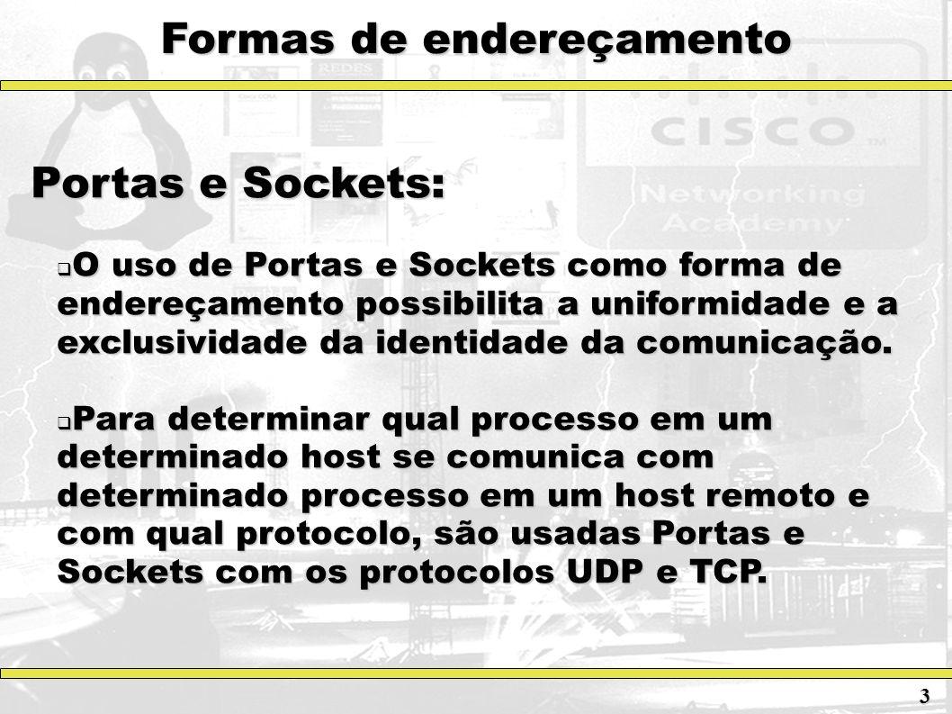 Formas de endereçamento Portas e Sockets: O uso de Portas e Sockets como forma de endereçamento possibilita a uniformidade e a exclusividade da identi