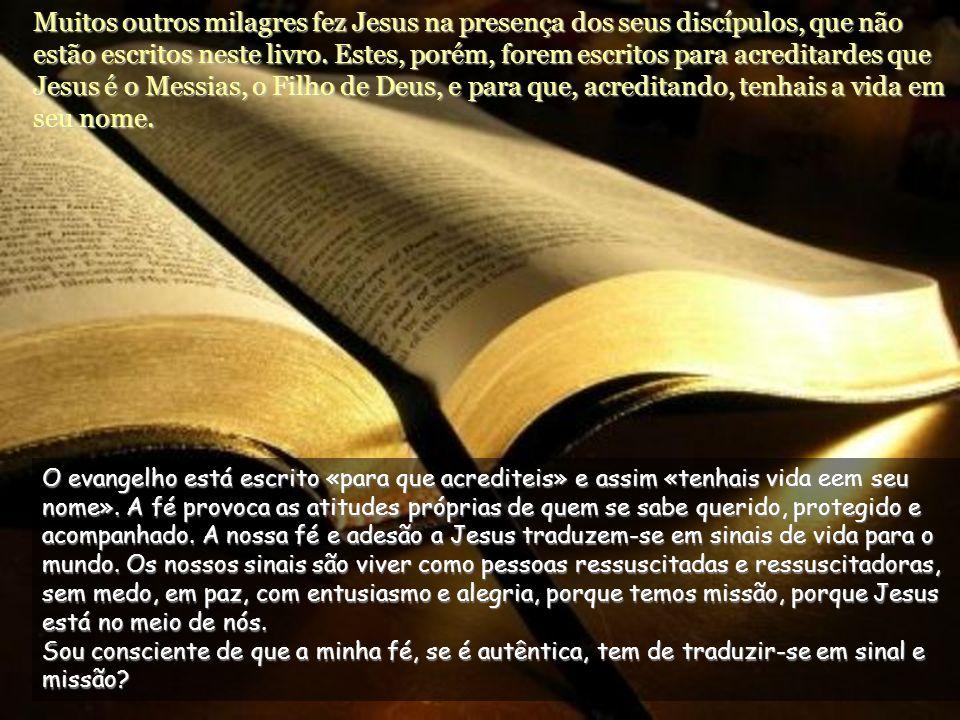 Disse-lhe Jesus: Porque Me viste acreditaste: felizes os que acreditam sem terem visto.