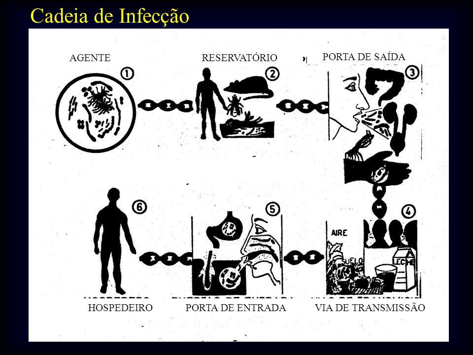 Cadeia de Infecção PORTA DE SAÍDA AGENTERESERVATÓRIO PORTA DE ENTRADAVIA DE TRANSMISSÃOHOSPEDEIRO