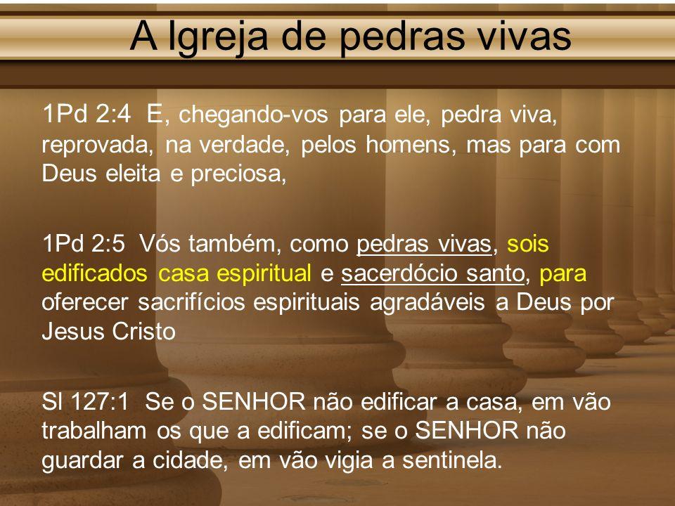 A Igreja de pedras vivas 1Pd 2:4 E, chegando-vos para ele, pedra viva, reprovada, na verdade, pelos homens, mas para com Deus eleita e preciosa, 1Pd 2