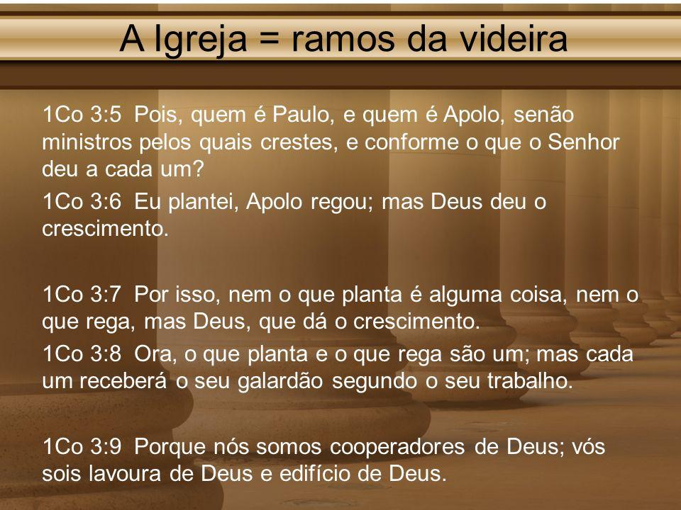 A Igreja = ramos da videira 1Co 3:5 Pois, quem é Paulo, e quem é Apolo, senão ministros pelos quais crestes, e conforme o que o Senhor deu a cada um?