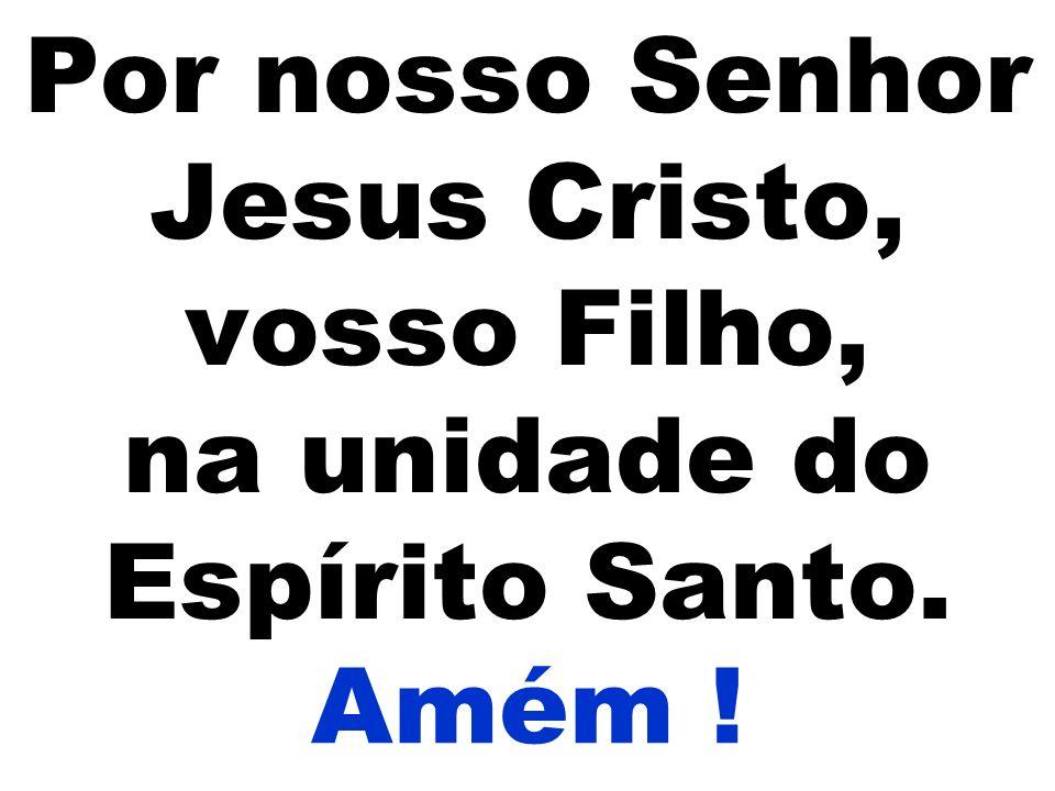 Por nosso Senhor Jesus Cristo, vosso Filho, na unidade do Espírito Santo. Amém !
