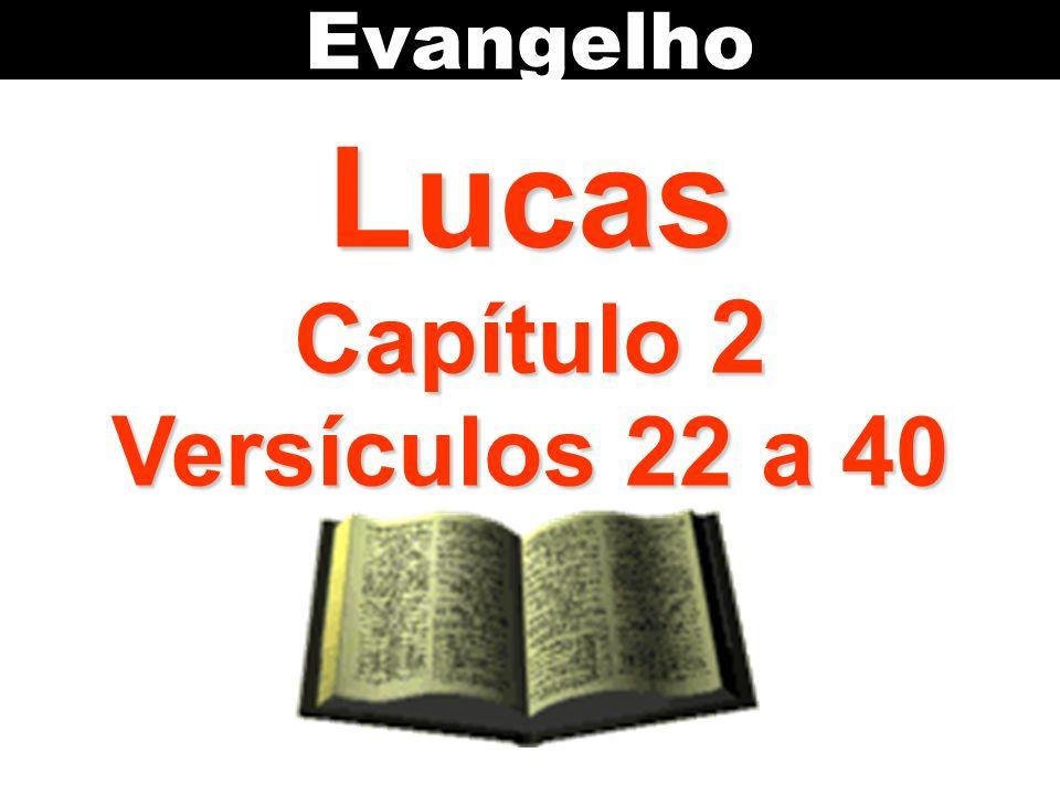 Lucas Capítulo 2 Versículos 22 a 40 Evangelho
