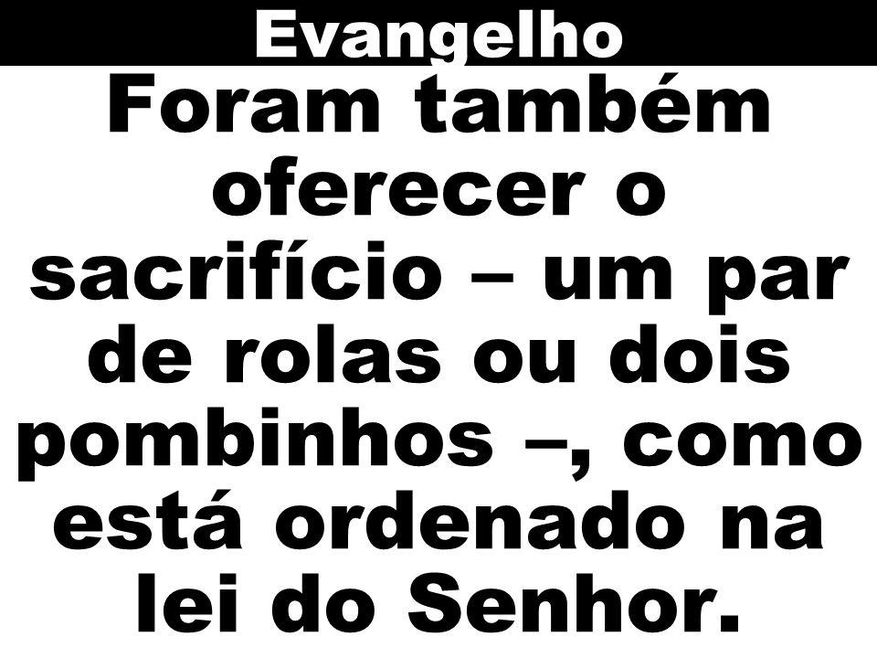 Foram também oferecer o sacrifício – um par de rolas ou dois pombinhos –, como está ordenado na lei do Senhor. Evangelho