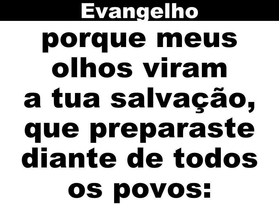 porque meus olhos viram a tua salvação, que preparaste diante de todos os povos: Evangelho