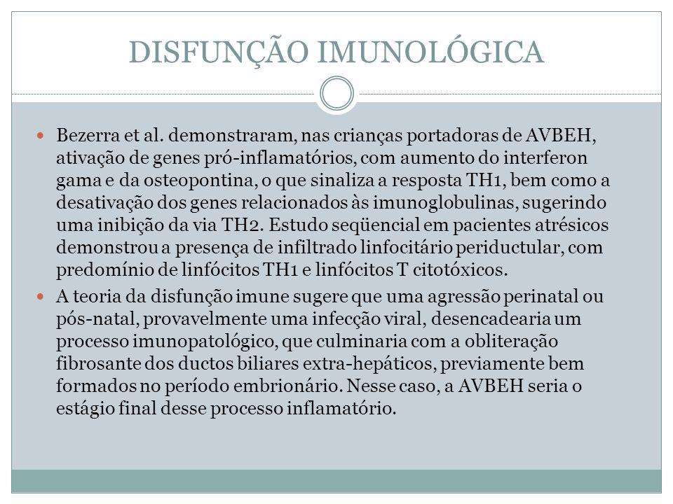 DISFUNÇÃO IMUNOLÓGICA Bezerra et al. demonstraram, nas crianças portadoras de AVBEH, ativação de genes pró-inflamatórios, com aumento do interferon ga