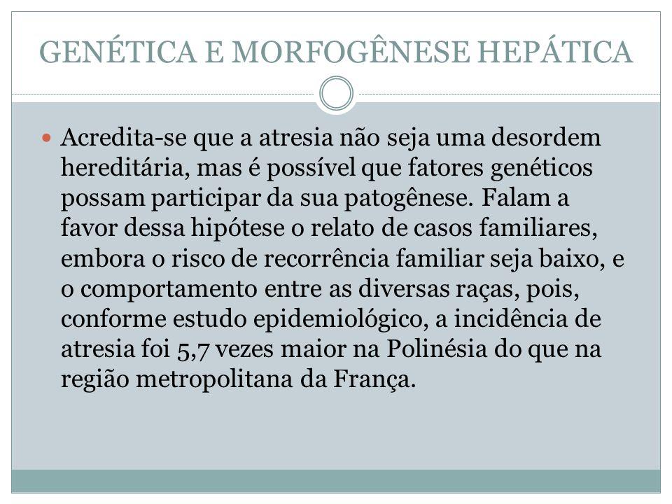 GENÉTICA E MORFOGÊNESE HEPÁTICA Acredita-se que a atresia não seja uma desordem hereditária, mas é possível que fatores genéticos possam participar da