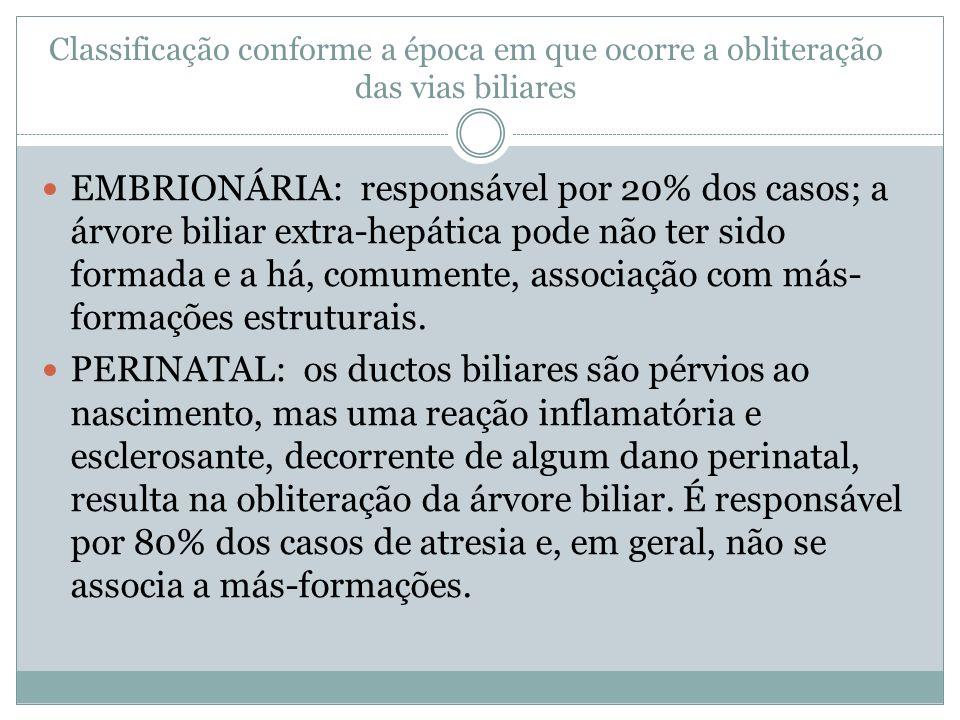 Classificação conforme a época em que ocorre a obliteração das vias biliares EMBRIONÁRIA: responsável por 20% dos casos; a árvore biliar extra-hepátic