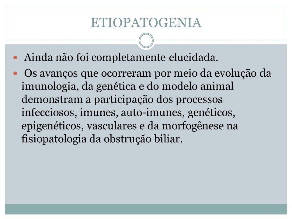ETIOPATOGENIA Ainda não foi completamente elucidada. Os avanços que ocorreram por meio da evolução da imunologia, da genética e do modelo animal demon