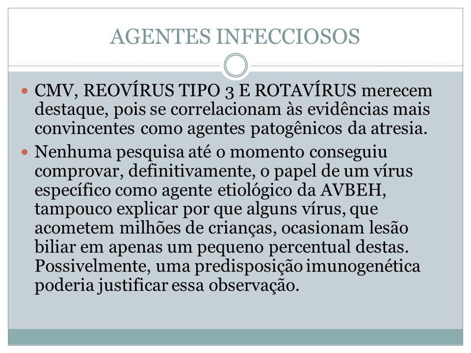 AGENTES INFECCIOSOS CMV, REOVÍRUS TIPO 3 E ROTAVÍRUS merecem destaque, pois se correlacionam às evidências mais convincentes como agentes patogênicos
