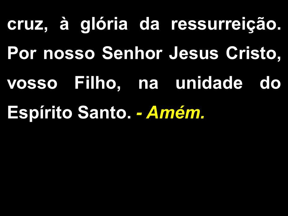 cruz, à glória da ressurreição. Por nosso Senhor Jesus Cristo, vosso Filho, na unidade do Espírito Santo. - Amém.