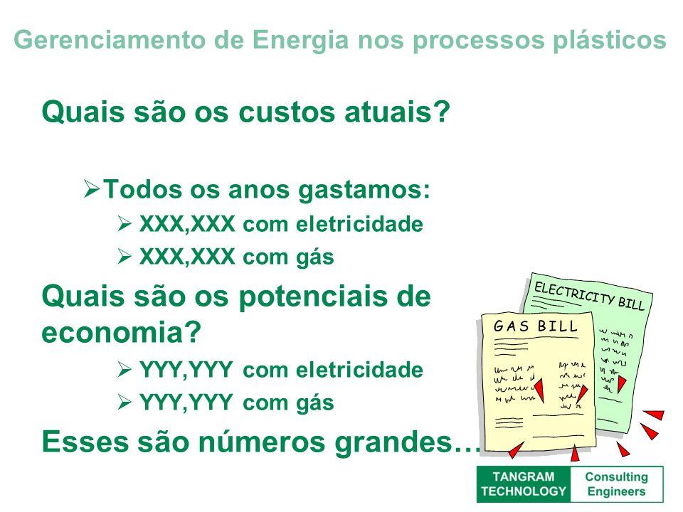 Quais são os custos atuais? Todos os anos gastamos: XXX,XXX com eletricidade XXX,XXX com gás Quais são os potenciais de economia? YYY,YYY com eletrici