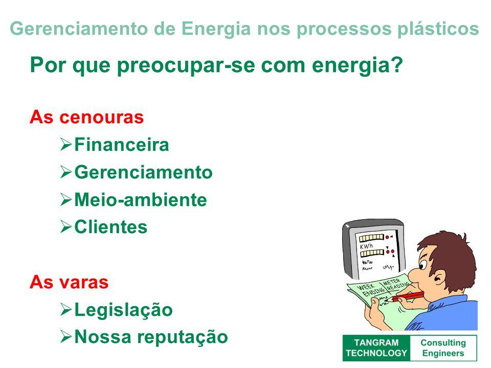 Por que preocupar-se com energia? As cenouras Financeira Gerenciamento Meio-ambiente Clientes As varas Legislação Nossa reputação