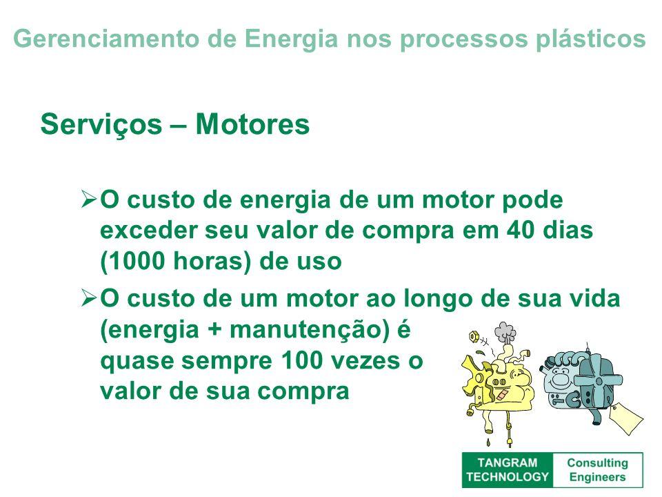 Serviços – Motores O custo de energia de um motor pode exceder seu valor de compra em 40 dias (1000 horas) de uso O custo de um motor ao longo de sua
