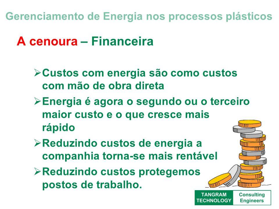 A cenoura – Financeira Custos com energia são como custos com mão de obra direta Energia é agora o segundo ou o terceiro maior custo e o que cresce ma
