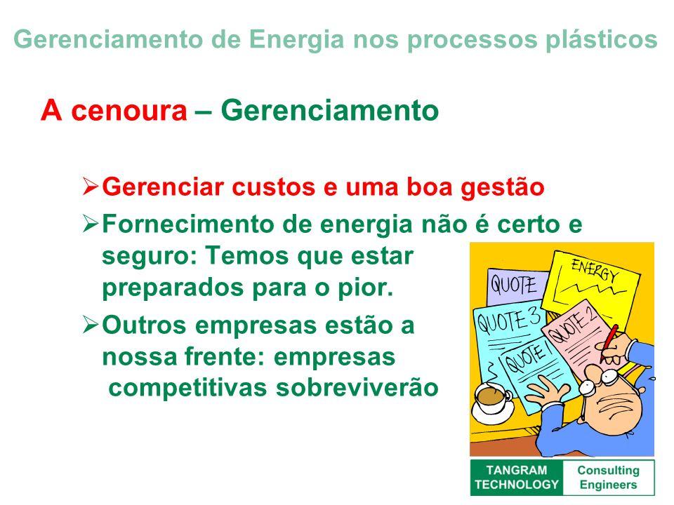 A cenoura – Gerenciamento Gerenciar custos e uma boa gestão Fornecimento de energia não é certo e seguro: Temos que estar preparados para o pior. Outr