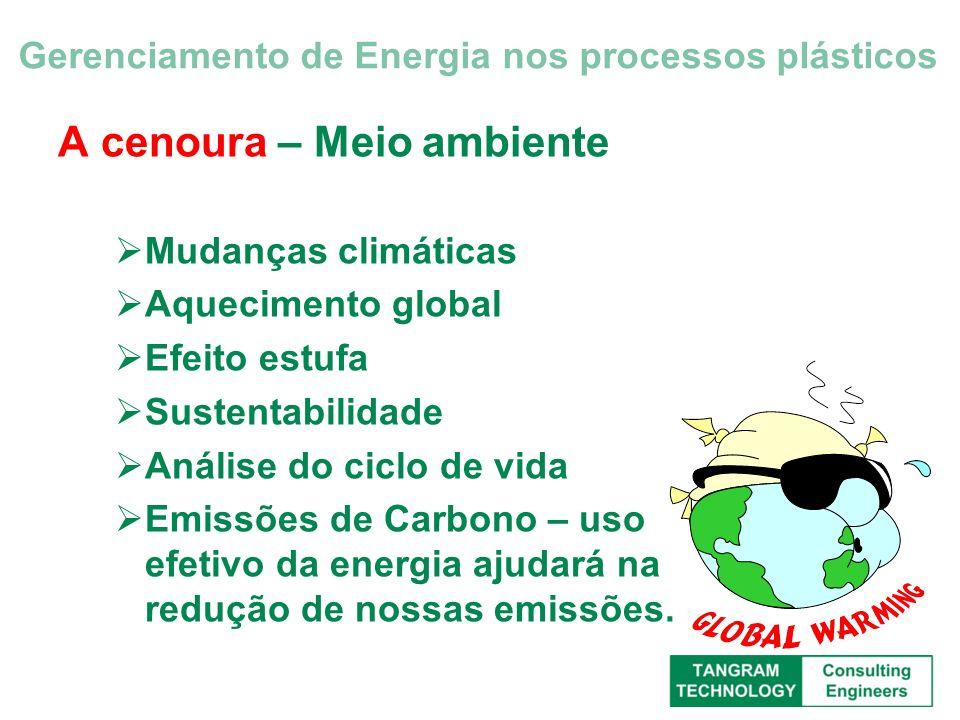 A cenoura – Clientes Nossos clientes se preocupam com nosso desempenho ambiental porque seus clientes se importam Pressão do consumidor – as perguntas estão apenas começando Gerenciamento de Energia nos processos plásticos