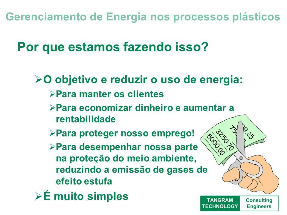 Serviços – Motores O custo de energia de um motor pode exceder seu valor de compra em 40 dias (1000 horas) de uso O custo de um motor ao longo de sua vida (energia + manutenção) é quase sempre 100 vezes o valor de sua compra Gerenciamento de Energia nos processos plásticos