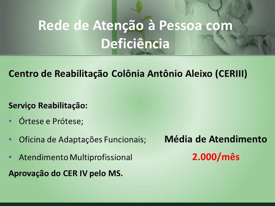 Centro de Reabilitação Colônia Antônio Aleixo (CERIII) Serviço Reabilitação: Órtese e Prótese; Oficina de Adaptações Funcionais; Média de Atendimento