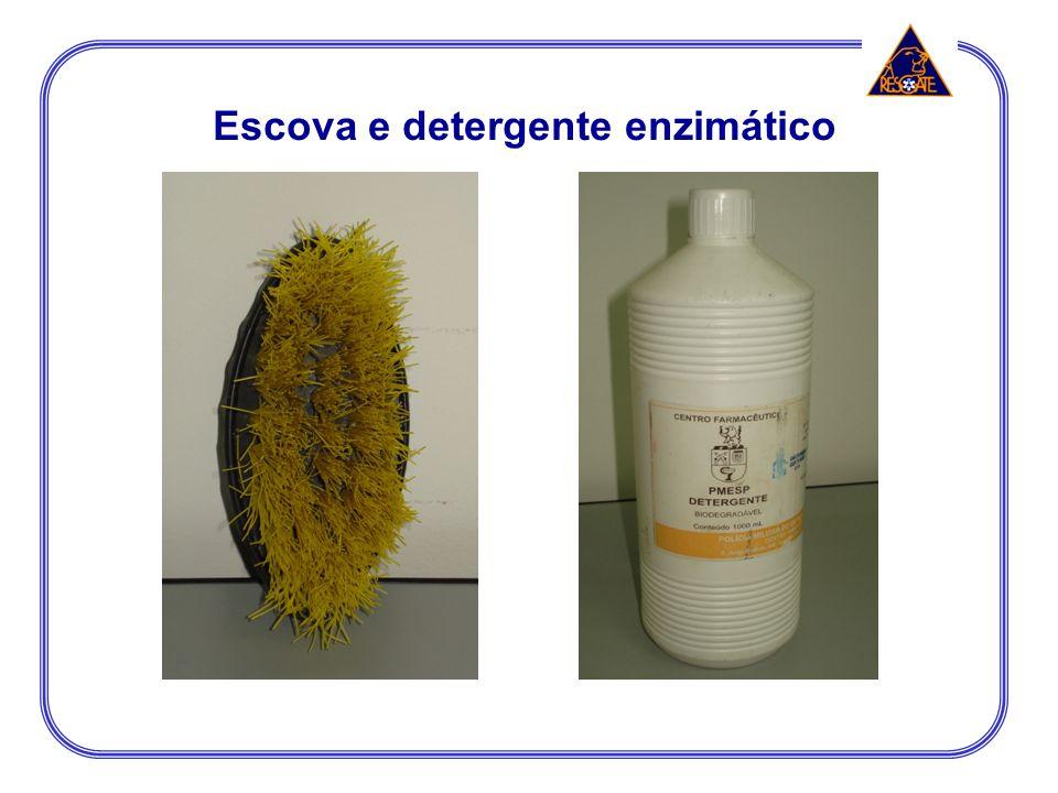 Escova e detergente enzimático