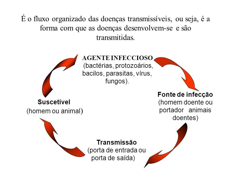 É o fluxo organizado das doenças transmissíveis, ou seja, é a forma com que as doenças desenvolvem-se e são transmitidas.
