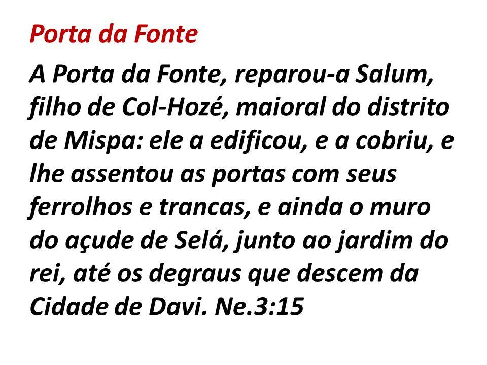 Porta da Fonte A Porta da Fonte, reparou-a Salum, filho de Col-Hozé, maioral do distrito de Mispa: ele a edificou, e a cobriu, e lhe assentou as porta