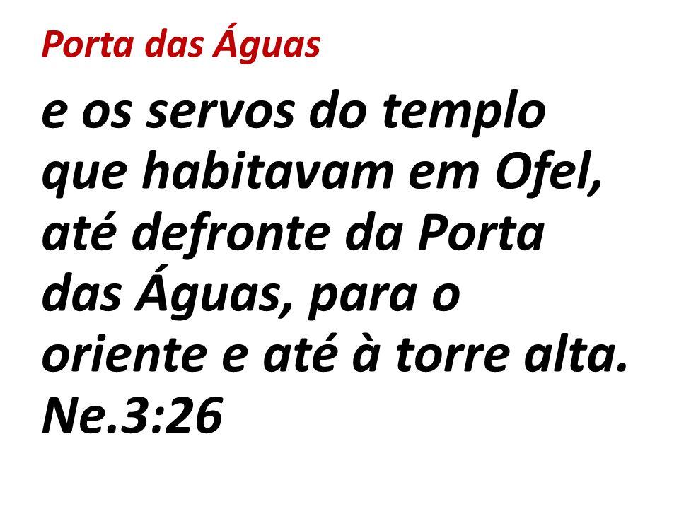 Porta das Águas e os servos do templo que habitavam em Ofel, até defronte da Porta das Águas, para o oriente e até à torre alta. Ne.3:26